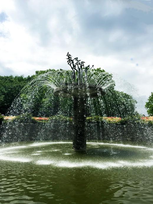 噴水_昭和記念公園