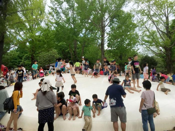 雲の海_昭和記念公園