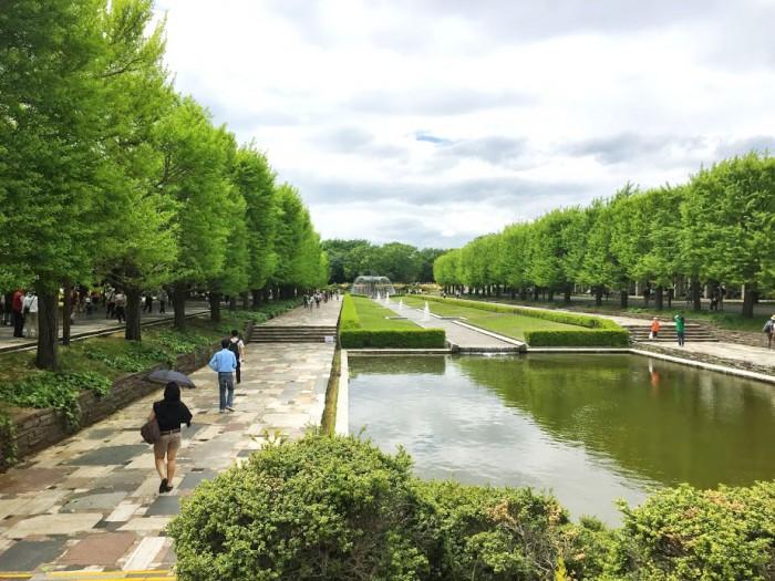 150504昭和記念公園_噴水通り