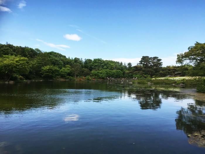 日本庭園全景_昭和記念公園